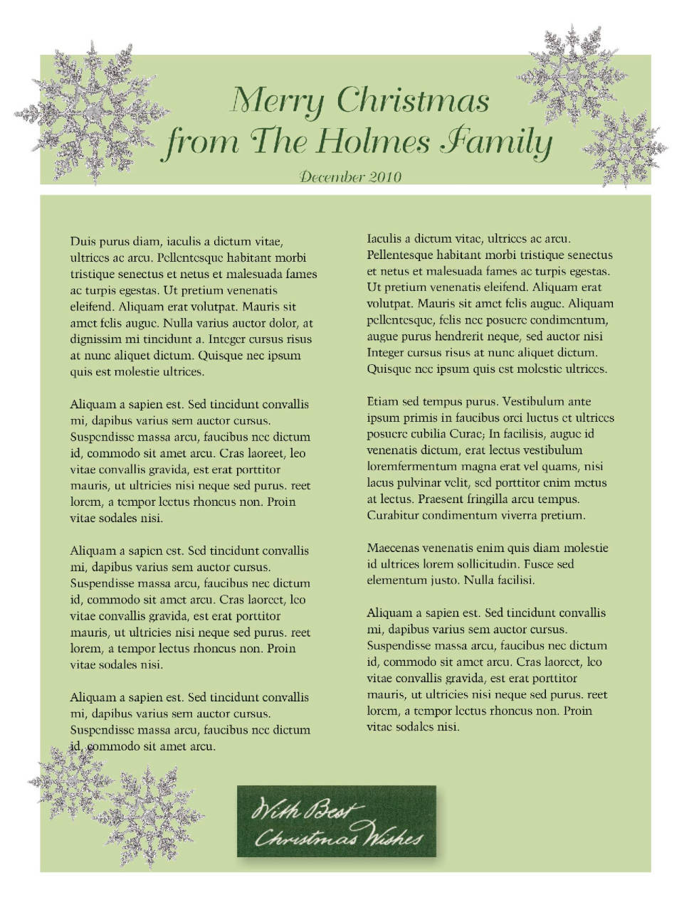 Annual Christmas Newsletter is our Family Journal