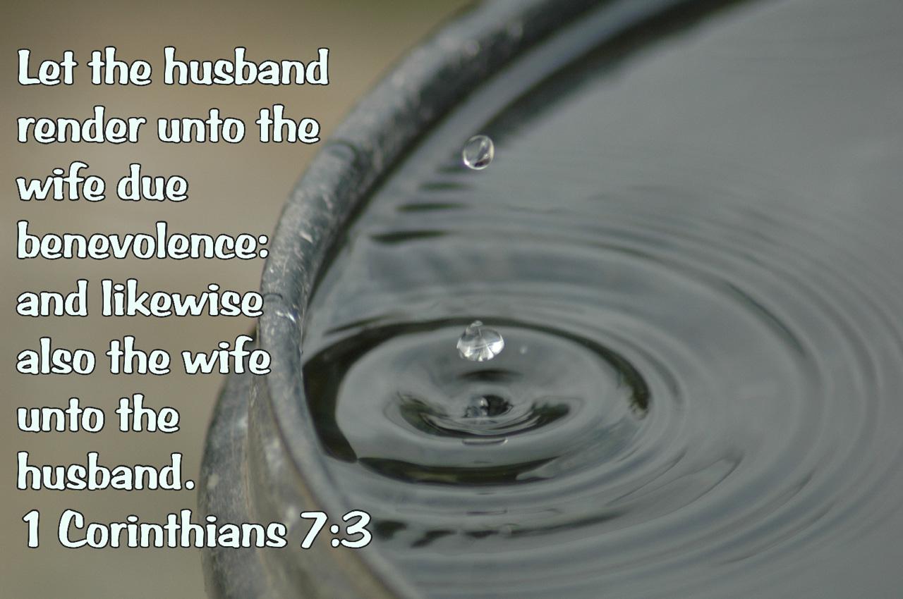 drop-in-bucket-scripture